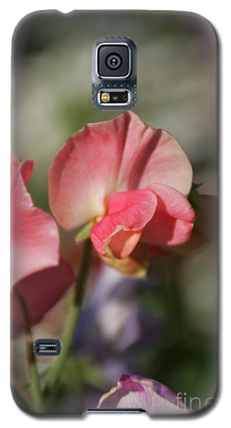 Sweet Sweet-peas Galaxy S5 Case