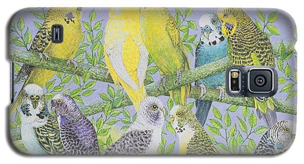 Canary Galaxy S5 Case - Sweet Talking by Pat Scott