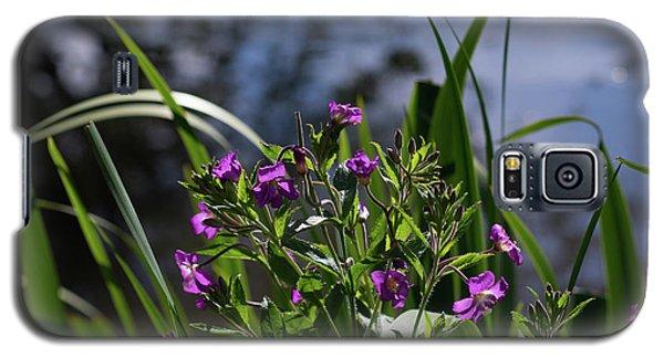Sweet Violet Galaxy S5 Case
