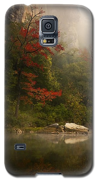 Sweetgum In The Mist At Steel Creek Galaxy S5 Case