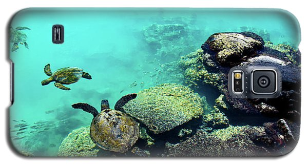 Swimming Honu Galaxy S5 Case