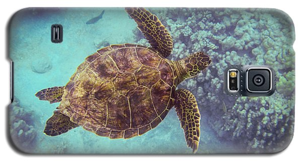 Swimming Honu From Above Galaxy S5 Case