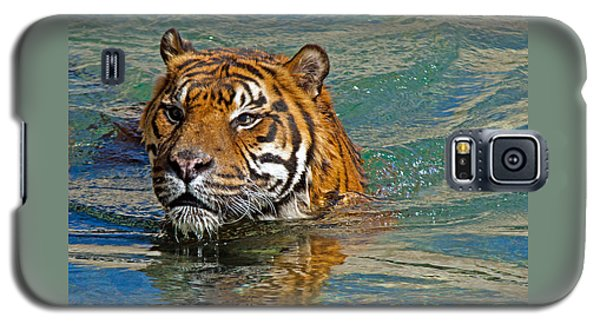 Swimming Tiger Galaxy S5 Case