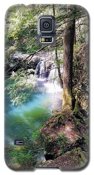 Sycamore Falls Galaxy S5 Case