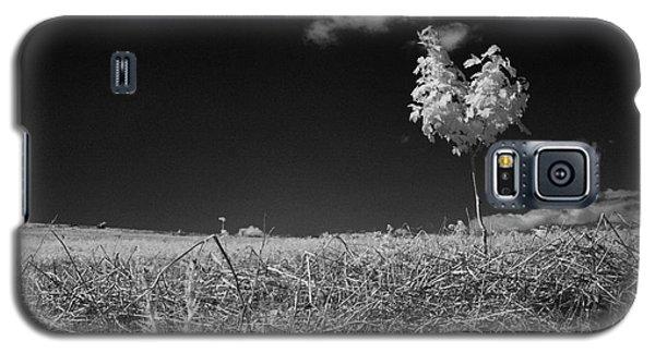 Sycamore Galaxy S5 Case