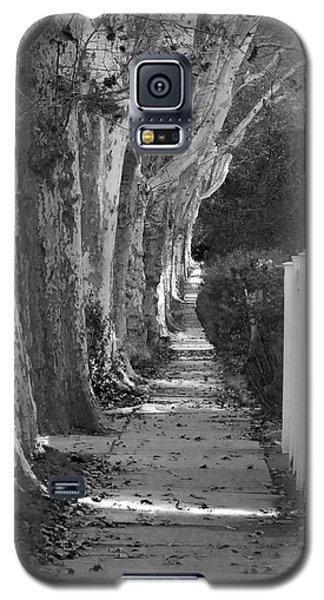 Sycamore Walk-grayscale Version Galaxy S5 Case