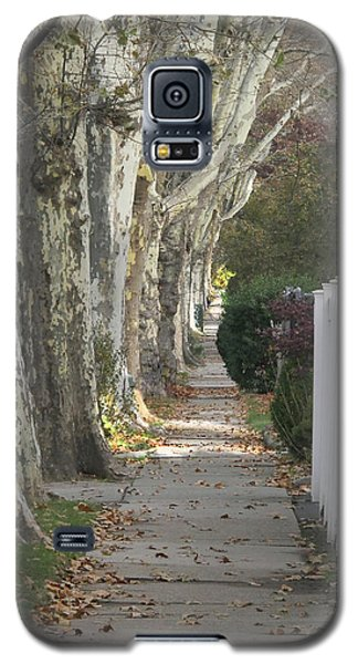 Sycamore Walk Galaxy S5 Case