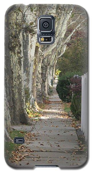 Sycamore Walk Galaxy S5 Case