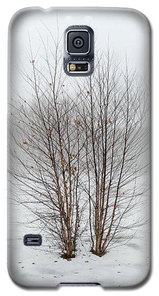 Symmetrees Galaxy S5 Case