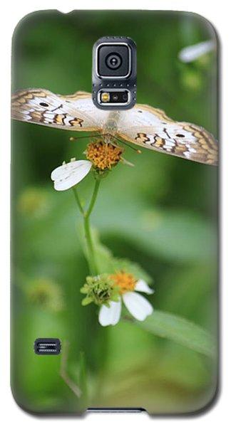 Symmetry Galaxy S5 Case