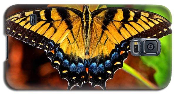 Symmetry Of A Butterfly 004 Galaxy S5 Case