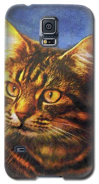 Tabby Blue Galaxy S5 Case