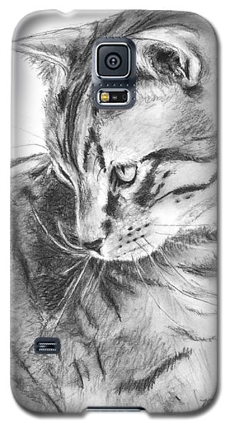 Tabby Cat In Profile Drawing Galaxy S5 Case