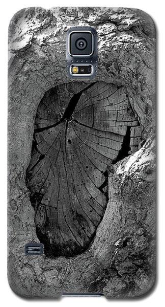 Galaxy S5 Case featuring the photograph Tahoe Abstract Bark by LeeAnn McLaneGoetz McLaneGoetzStudioLLCcom