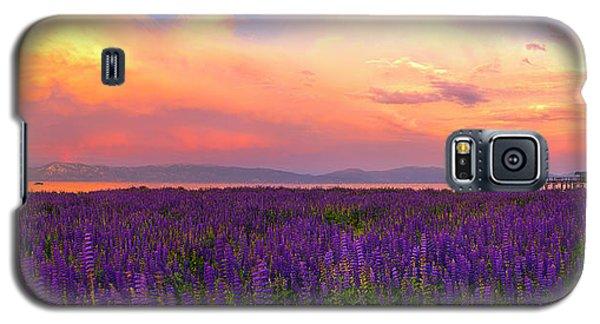 Tahoe City Lupine Sunset By Brad Scott Galaxy S5 Case