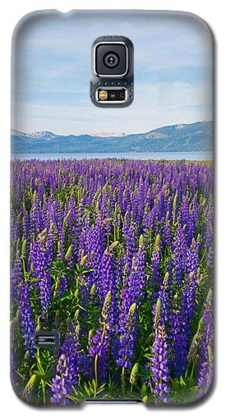 Tahoe In Summer Galaxy S5 Case