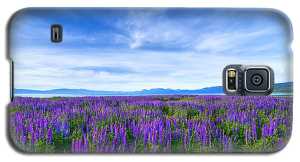Tahoe Lupines Galaxy S5 Case