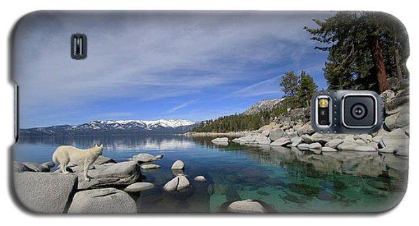 Tahoe Wow Galaxy S5 Case