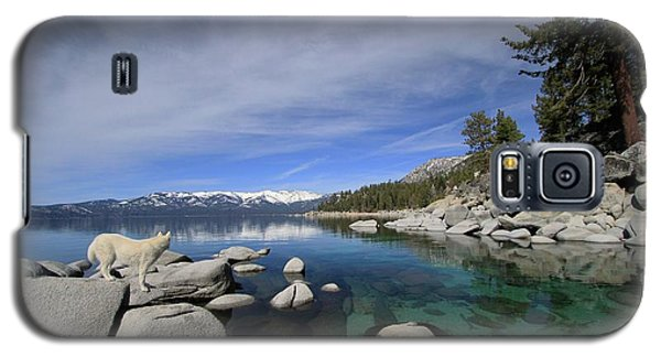 Tahoe Wow Galaxy S5 Case