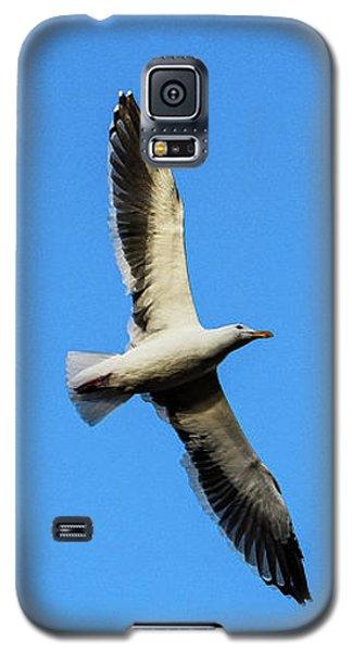 Take Flight Galaxy S5 Case