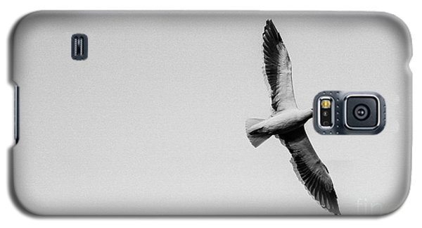 Take Flight, Black And White Galaxy S5 Case