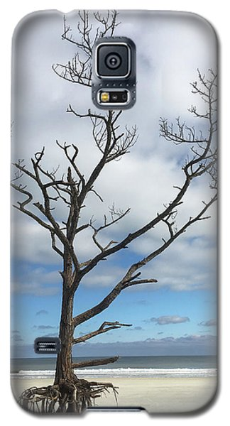 Talbot Stilt Tree #1 Galaxy S5 Case