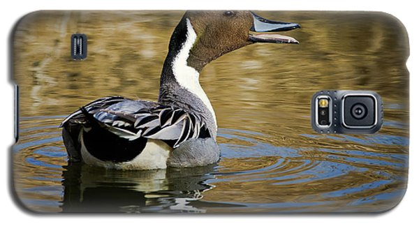 Talking Pintail Galaxy S5 Case