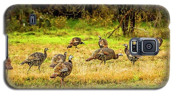 Talking Turkey Galaxy S5 Case