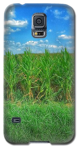 Galaxy S5 Case featuring the photograph Tall Corn by Jame Hayes