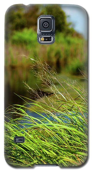 Tall Grass At Boat Dock Galaxy S5 Case