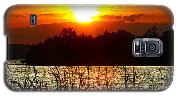 Tall Grass Sunset 2 Smith Mountain Lake Galaxy S5 Case