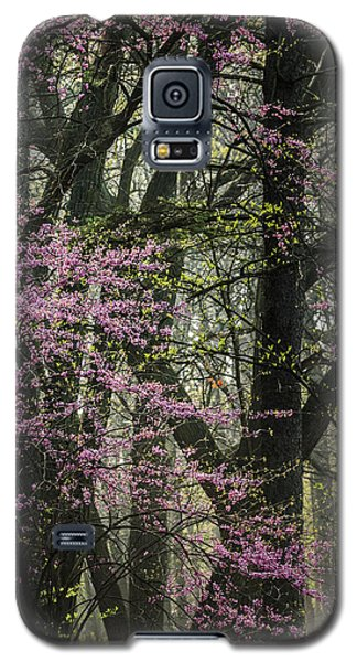 Tall Red Buds In Spring Galaxy S5 Case by Joni Eskridge