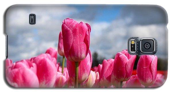 Tall Standing Tulip Galaxy S5 Case