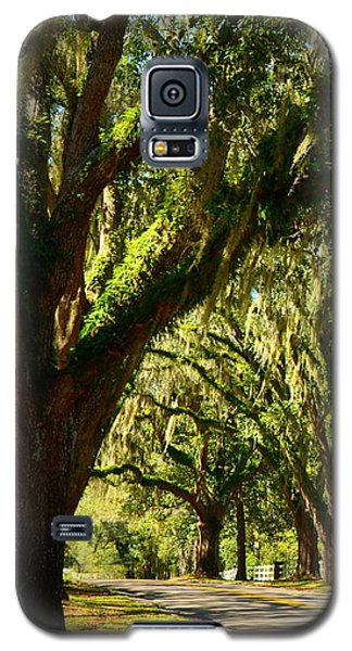 Tallahassee Canopy Road Galaxy S5 Case