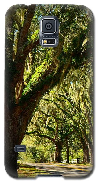 Tallahassee Canopy Road Galaxy S5 Case by Carla Parris