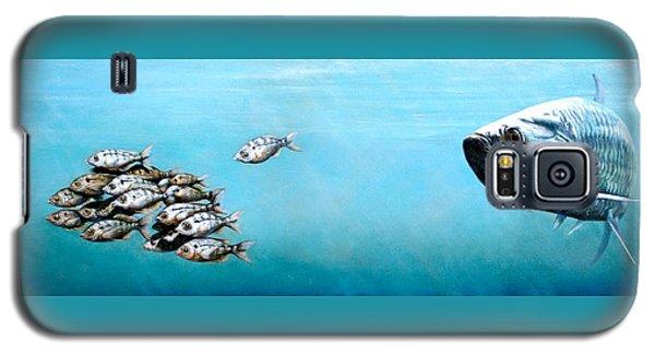 Tampa Bay Tarpon Galaxy S5 Case
