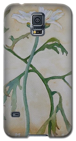 Tanacetum Galaxy S5 Case