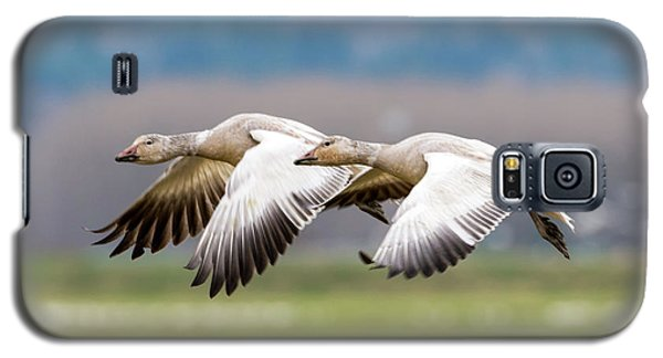 Galaxy S5 Case featuring the photograph Tandem Glide by Mike Dawson