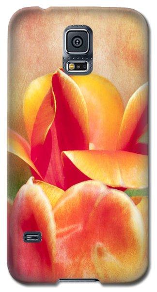 Tangerine Tulip Sorbet Galaxy S5 Case