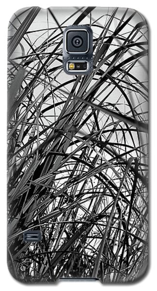Galaxy S5 Case featuring the photograph Tangled Grass by Susan Capuano