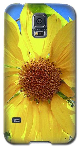 Tangled Sunflower Galaxy S5 Case