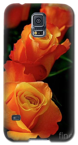 Galaxy S5 Case featuring the photograph Tango In Three by Cathy Dee Janes
