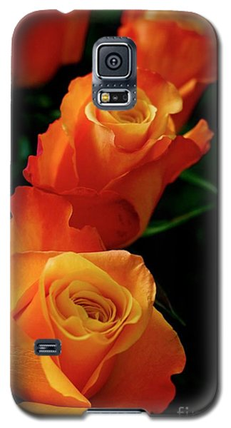 Tango In Three Galaxy S5 Case by Cathy Dee Janes