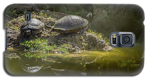Tanning Turtles Galaxy S5 Case