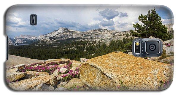 Tanya Overlook  Galaxy S5 Case
