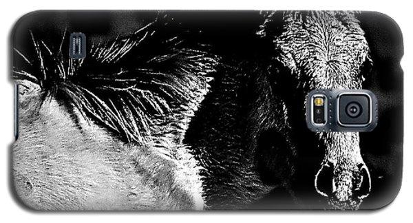 Taos Pony In B-w Galaxy S5 Case