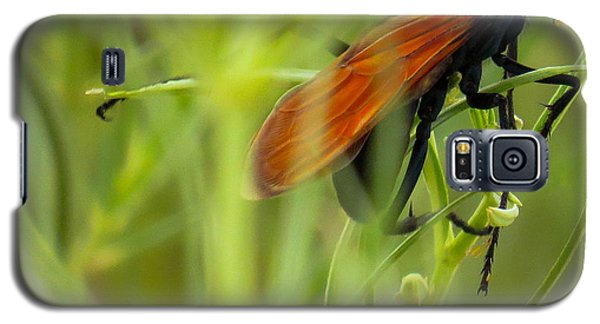 Tarantula Hawk 1 Galaxy S5 Case