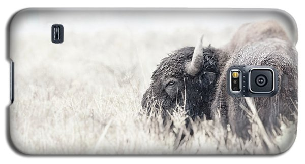 Tatanka Galaxy S5 Case