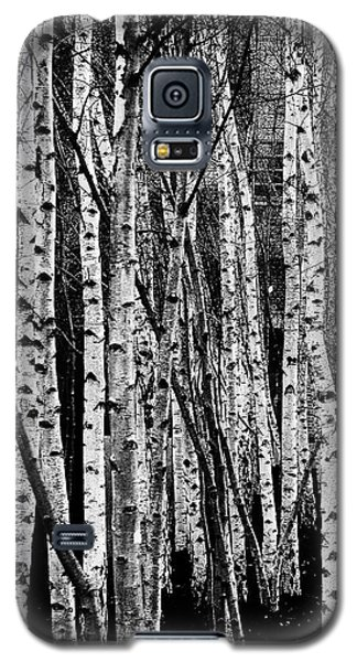 Tate Willows Galaxy S5 Case