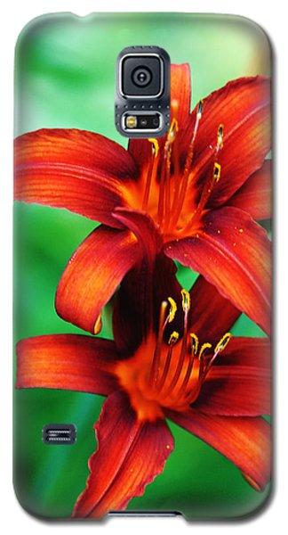 Tawny Beauty Galaxy S5 Case